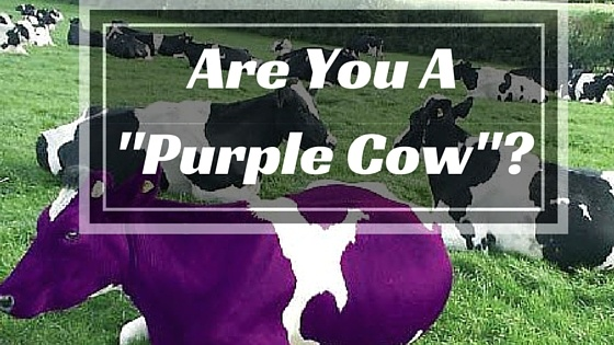business marketing plan - purple cow